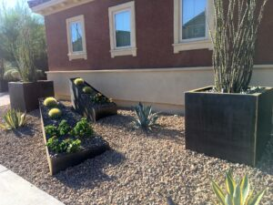 Using Cor-ten planters to create a desert garden